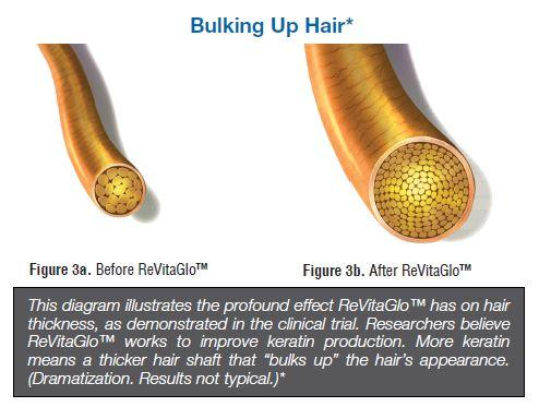 bulkinghair