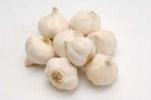 garlic2