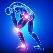 MSM Reduces Inflammation and Joint Pain, Supports Immune System