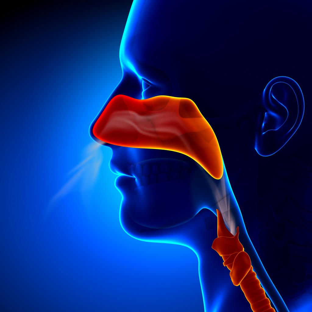 5 Natural Remedies for Sinus Congestion