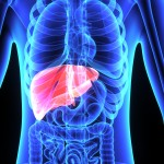 5 Foods That Cleanse Your Liver