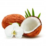 Coconut: Top of the Superfood Chain