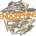 Endorphins: Release Your Inner Analgesic