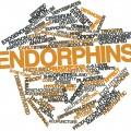 Endorphins: Release Your Inner Analgesic