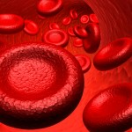 PRP – Platelet Rich Plasma Therapy