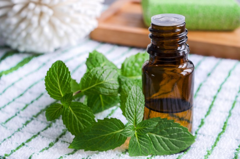 5 Ways Peppermint Can Work for You