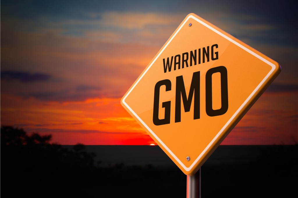 How to Spot GMO Foods