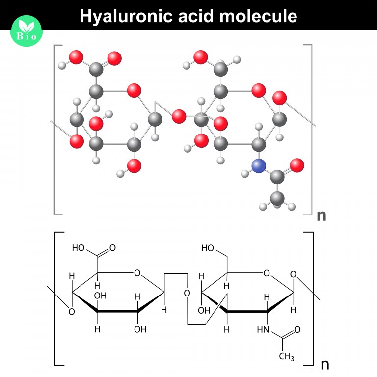 7 Benefits of Hyaluronic Acid