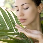 5 Benefits of Aloe Vera