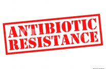 superbug antibiotics