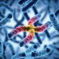 New Cancer Biomarker Found