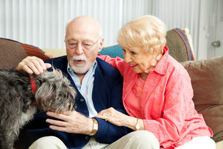 Health Benefits of Pet Therapy