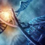 Stem Cells Closer to Reversing Macular Degeneration