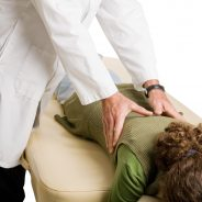 14 Benefits of Using a Chiropractor