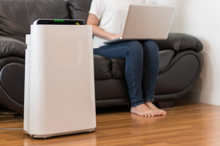 6 Benefits of Using an Indoor Air Purifier