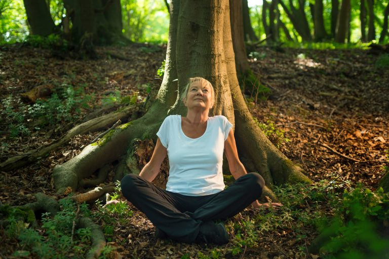 Can't Touch? Try Forest Bathing