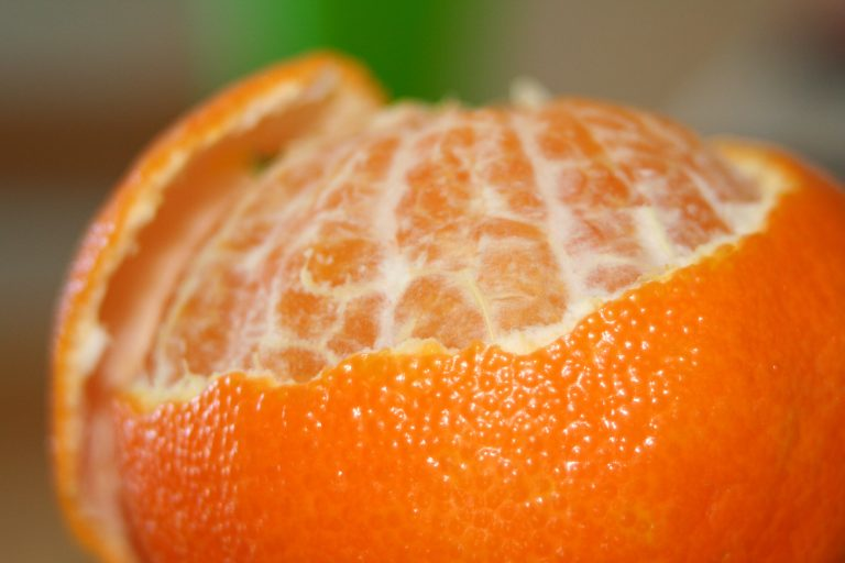 Eat the Skin: Citrus Pith, A Nutritional Powerhouse