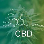 CBD and Chronic Pain — Health Facts You Need to Know