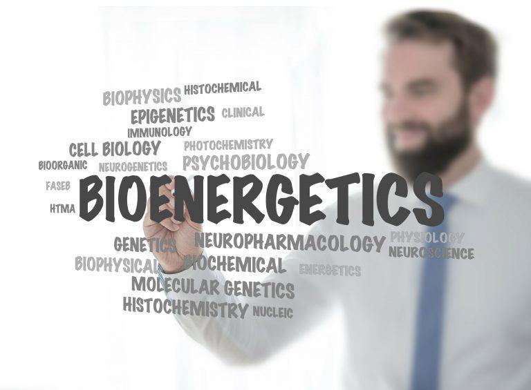 Studying Bioenergetics for Macular Degeneration Treatment